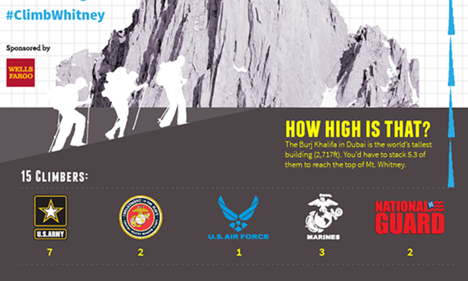 Infographic showing military branch breakdown of the team